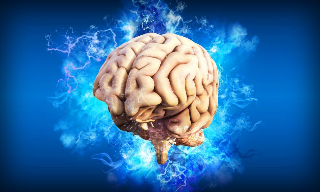 brain, thought, mind